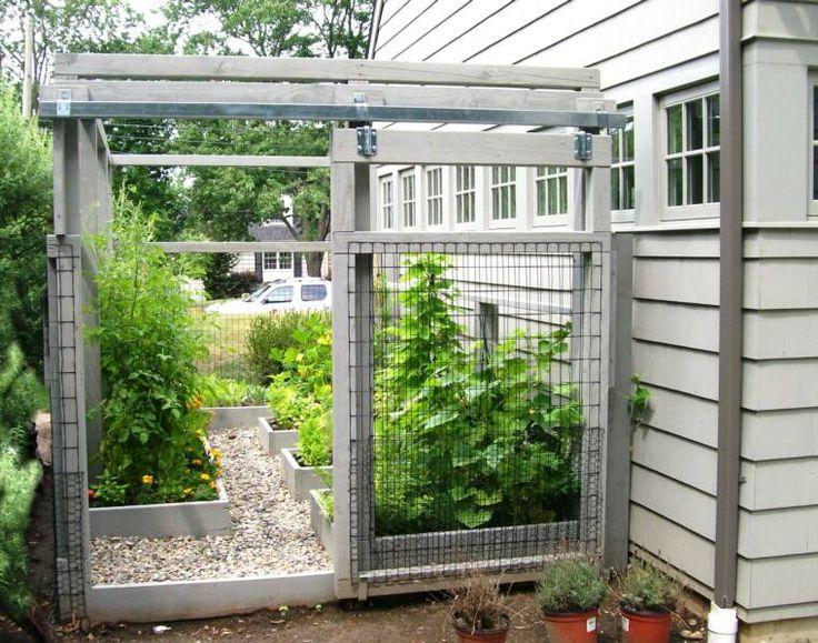 School garden backyard vegetable garden low for Vegetable garden maintenance