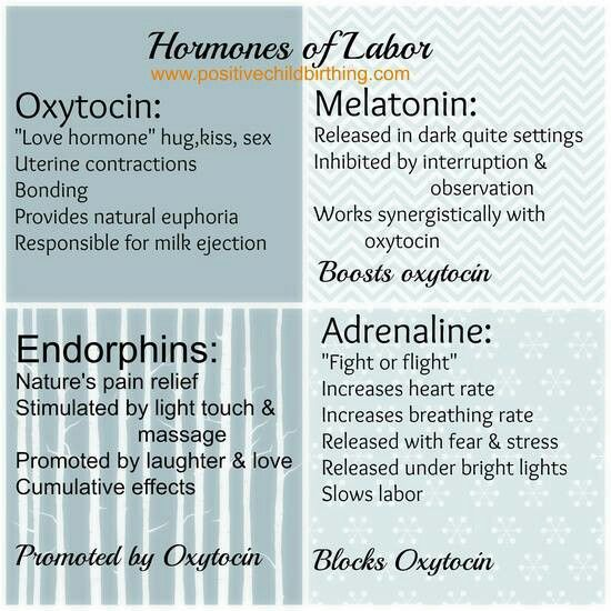 Hormones of labor by www.PositiveChildbirthing.com.  Repinned by http://PregnancyProfessor.com