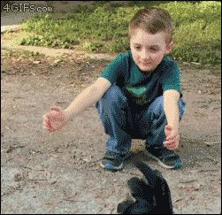 """""""Boy hugs chicken is back! This time the boy has a haircut and the chicken doubts if she has the right boy. [watch video] """" i like this because i'm like 100% sure she doesn't doubt the..."""
