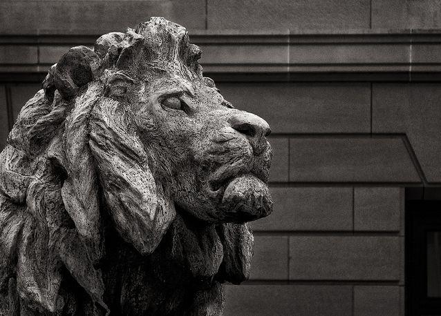 Chicago: Chicago Lion, Favorite Places, Favorite Lions, Aic Lion, Regal Lion, Wonderful Places