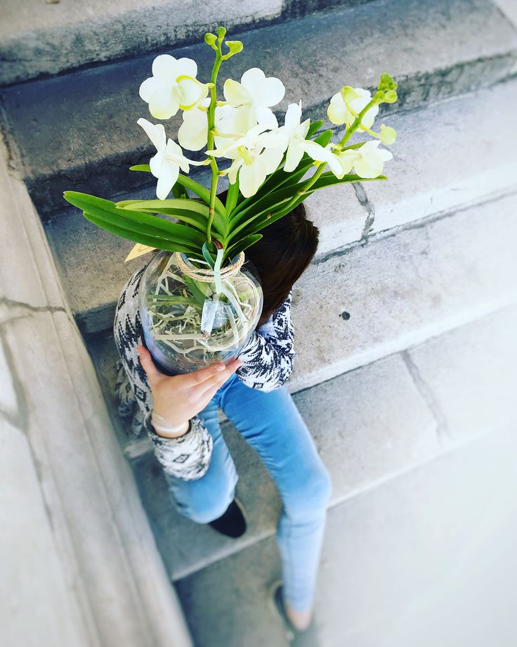 Vanda love! #vanda #orchid #orchidee