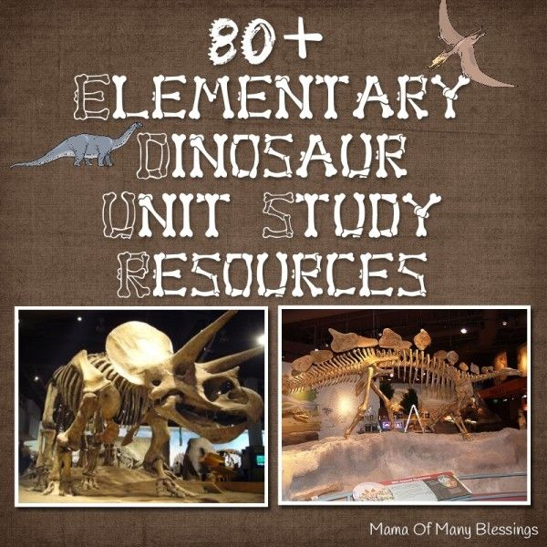A list of over 80 dinosaur unit study ideas. Dinosaur sensory ideas, lap books, crafts, books, science projects, and many more!
