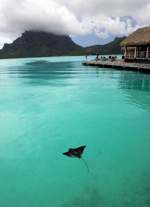 Bora Bora - my next holiday destination