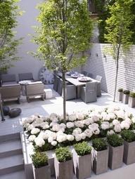 bloembakken met witte bloemen prachtig voor in de tuin