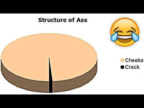 Funniest Pie Charts Ever! - YouTube