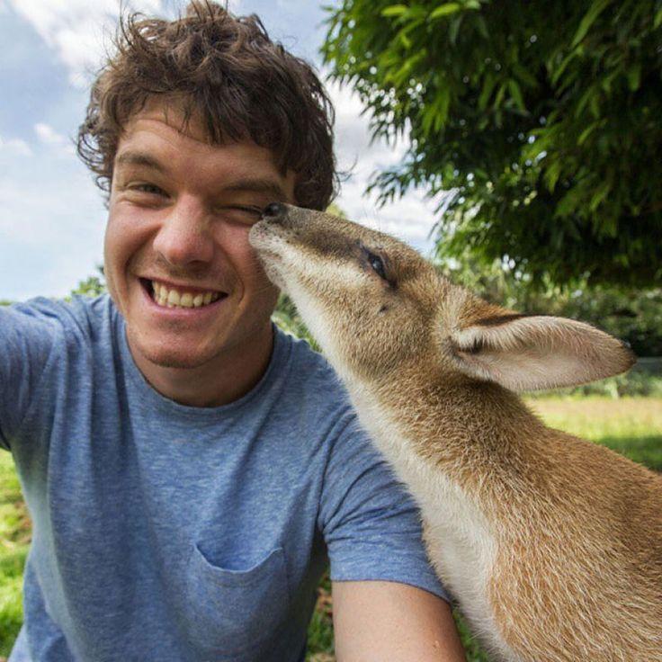 experto-selfies-animales-allan-dixon (1)