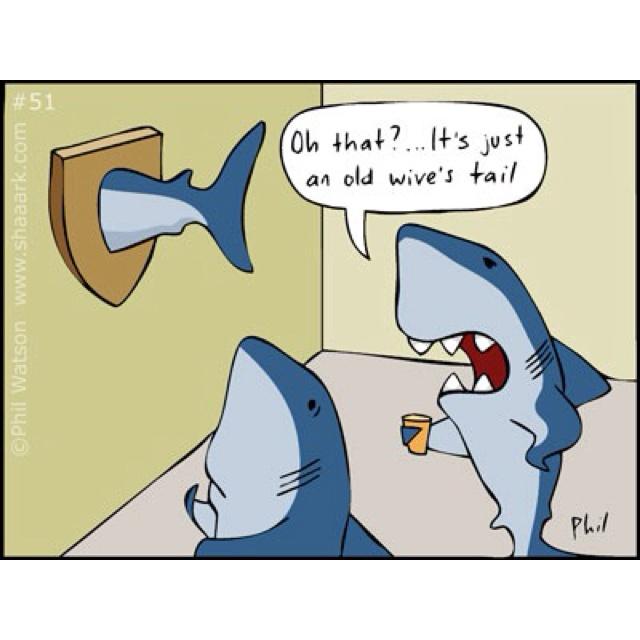 Shark Cartoons