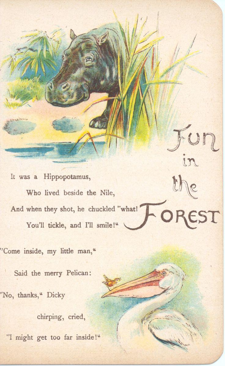 113 besten The Happy Hippo Bilder auf Pinterest | Flusspferd ...