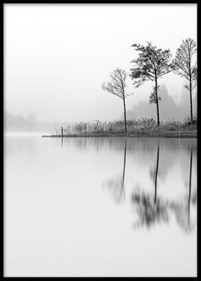 Svartvit fototavla med natur. Tavla med svartvitt fotografi av skog och sjö. Stämningsfull och harmonisk poster i svartvitt. www.desenio.se