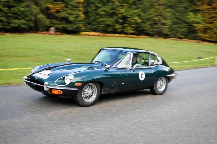 Ein Jaguartraum ...