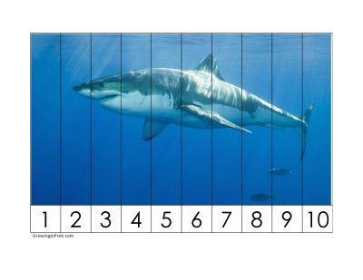 More Number Puzzles