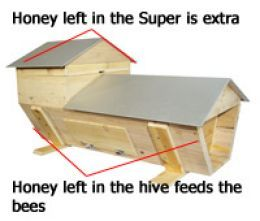 Super on a top bar hive
