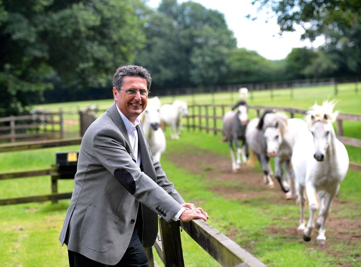 """Non-profit Animal Health Trust is the go-to treatment centre for """"companion animals"""" – and a global phenomenon in the veterinary world, says Jonathan Margolis"""