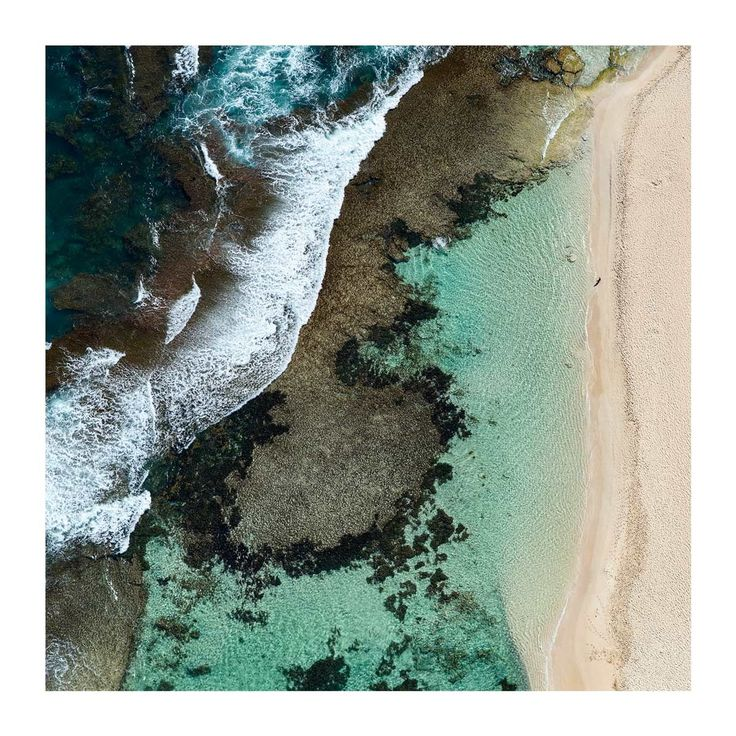 """""""Immersed"""" - Yallingup Lagoon, Western Australia. A border collie watches as its master takes a morning dip. Shot from a Cessna 174.  . #experiencemargaretriver #yallingup #justanotherdayinwa #australiaasw #westisbest #perthisok #seeaustralia #mynikonlife #beaches #surf #naturephoto #main_vision #artofvisuals #aerial #landscape_captures #awesome_earthpix #natureaddict #rsa_nature  #awesomeearth"""