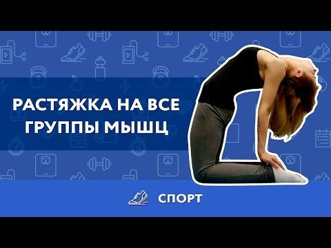 ВИДЕО: Самые эффективные упражнения для растяжки мышц - Лайфхакер