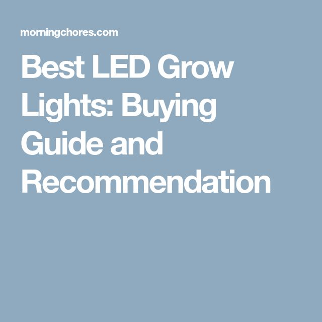 Best LED Grow Lights: Buying Guide and Recommendation