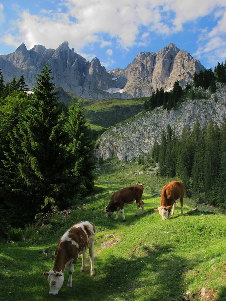 """The quintessential Austria shot on the descent from the """"Wilder Kaiser"""". Gorgeous pic! by =JamesRushforth on deviantART"""