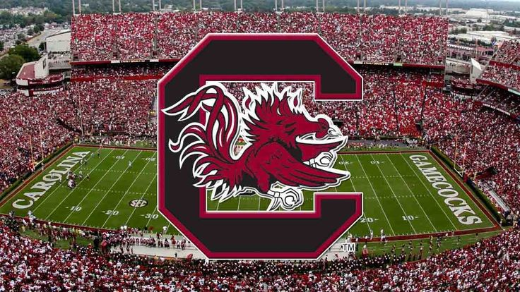 Reasons To Root For The University Of South Carolina #usc #college #theodyssey #clemson #tigers #gamecocks #carolina #rivalry #football #tailgate #odyssey #article #university #universityofsc #universityofsouthcarolina #southcarolina #south #thesouth #southern #schools #school #education