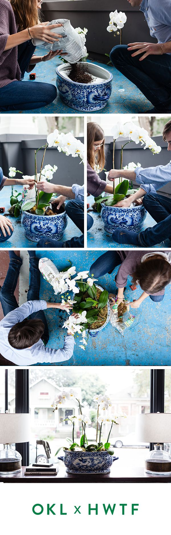 Try potting an orchid in a vintage chinoiserie vase! To create their orchid arrangement, Kate and Alex formed channels in the basin of a large chinoiserie tureen with Styrofoam, then tucked the orchids, still in their plastic containers, in the holes. They topped everything off with moss to hide the plastic.
