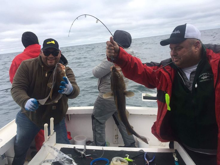 Cod and Black Sea Bass Fishing Trip  Block Island  See the Berkley Gulp in Chartreuse  We used Daddy Mac Jigs and Berkley Gulp all day  Captain Robert Taylor