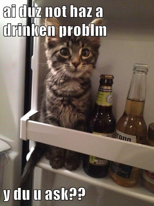ai duz not haz a drinken problm  y du u ask?? http://cheezburger.com/9024119296