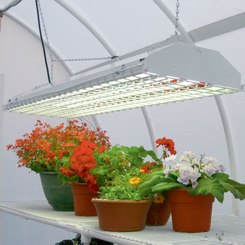 How to Select the Best Indoor Grow Lights for Vegetables |