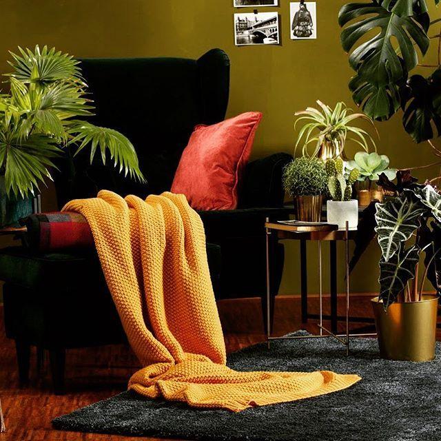 Urban Garden Feeling Pur Retro Room Indoor Design Home