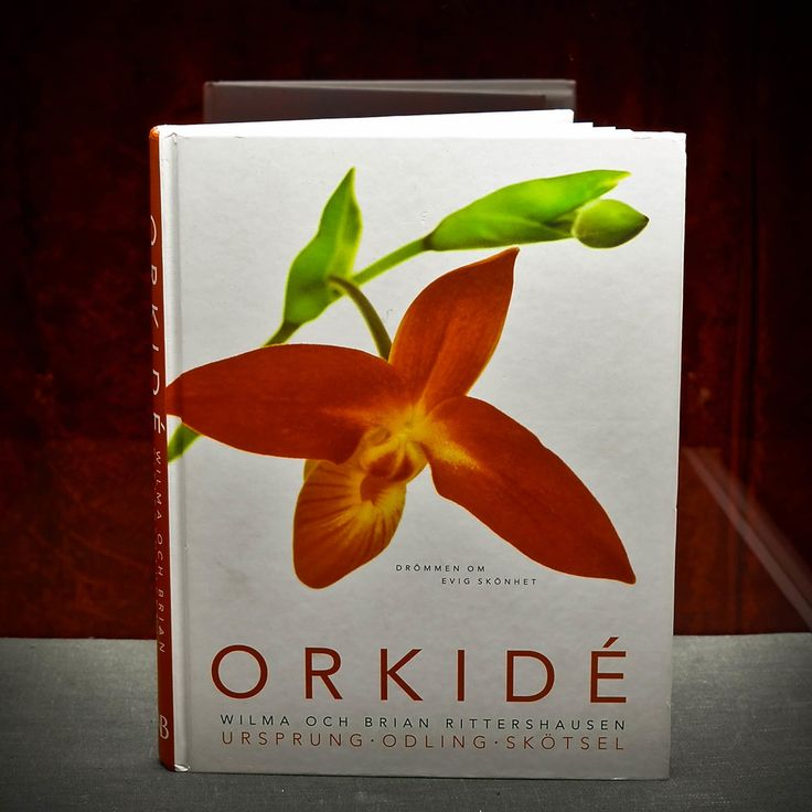 Item #117 Learn How to Talk to Orchids