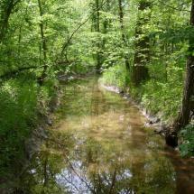 Small Creek near Carlinville, Illinois