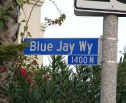 Image result for blue jay way