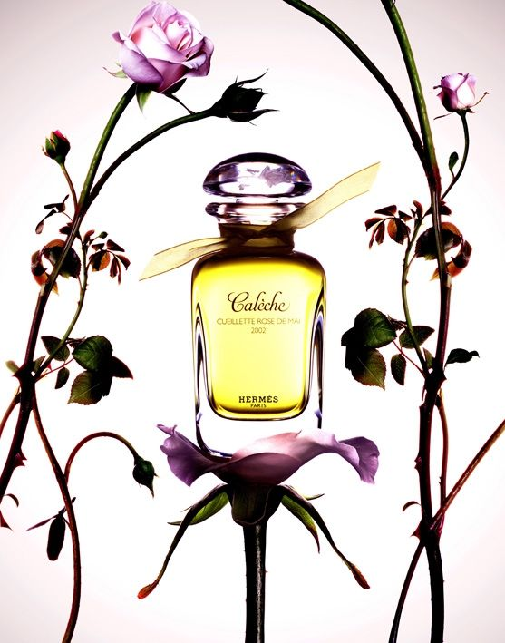 Calèche by Hermès, Cueillette Rose de Mai 2002