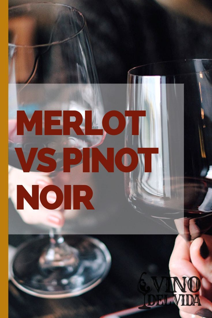 Pin On Wine Knowledge
