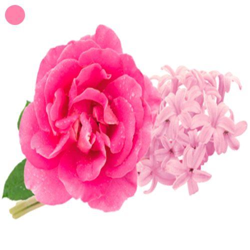 Rose Intemporelle  Description: De Lampe Berger Rose Intemporelle - Timeless Rose Lampe Berger dacht voor u een tijdloze roos uit die uniek is in zijn soort. Deze echte schat aan geuren die in de volksmond Meiroos genoemd wordt is ontstaan uit een complexe kruising van 4 rozen die gekweekt worden in Grasse de hoofdstad van de parfum. Een volle en elegante atmosfeer die bestaat uit groene toetsen gesublimeerd door een bloemig akkoord in het hart en omgeven met zachtheid en een touch van…