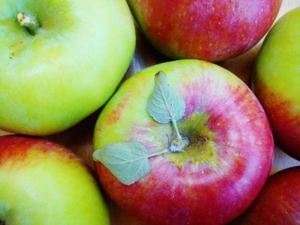 Zamiast jogurtu domowy deser jabłkowo-cynamonowy. Więcej na: https://www.fitomento.com/wiedza/zdrowe-zamienniki