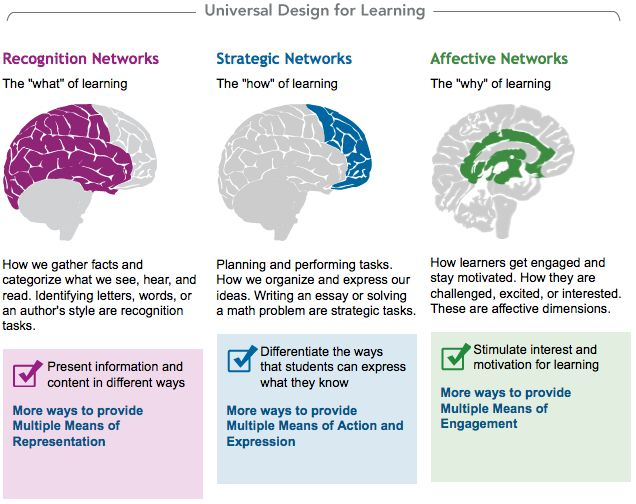 How Universal Design for Learning (UDL) has been used in special education classrooms