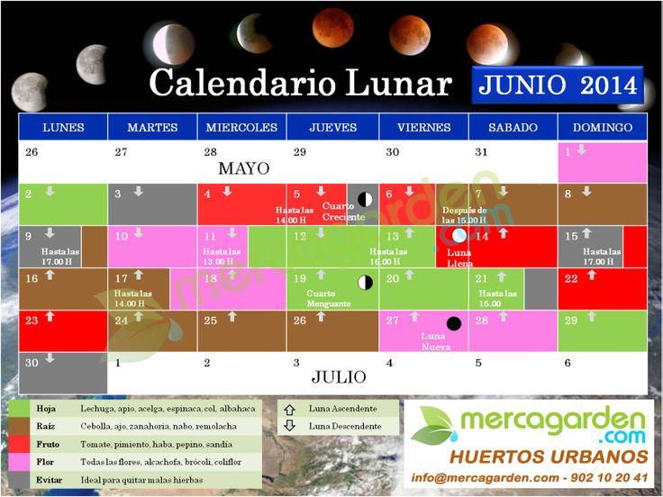 Calendario Lunar Junio'14