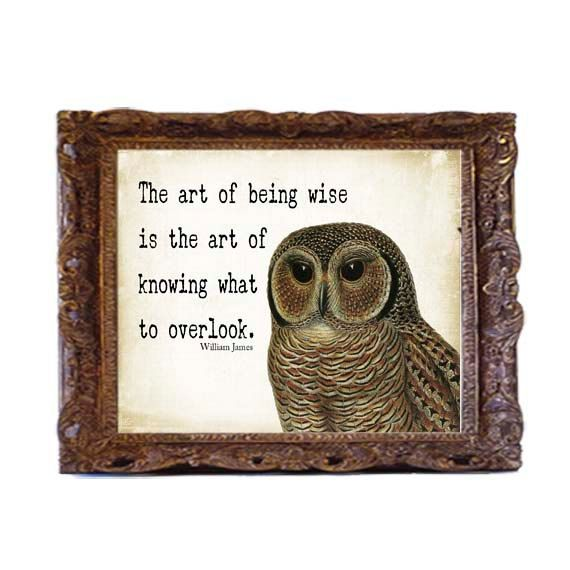 typography 10x13 owl quote art print distressed by Printpressfmt, $18.95