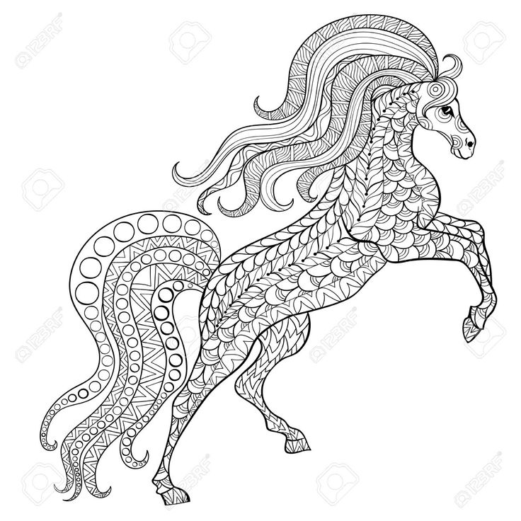 Hand Drawn Horse For Antistress Coloring Page With High Details Stock Vector