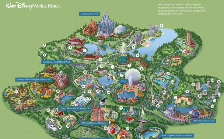 Something that can certainly help you in planning your day in Disney is a par