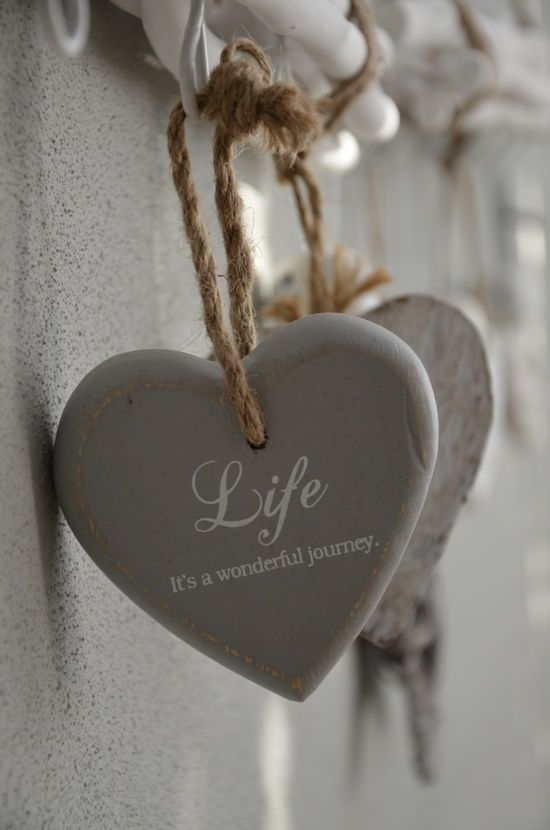 LIFE ~ It's a wonderful journey.