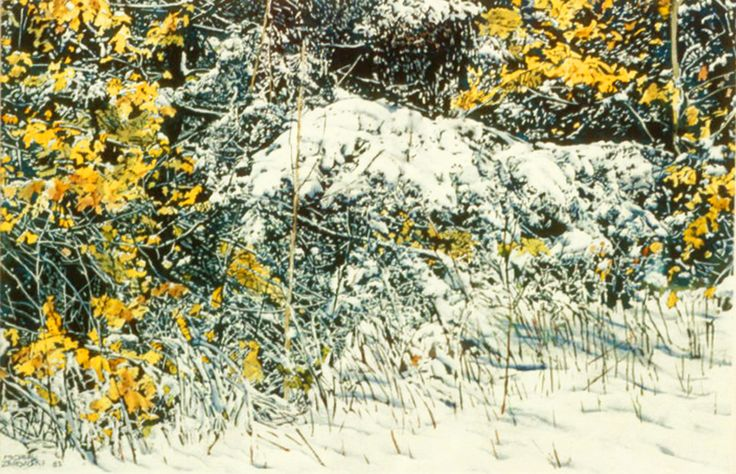 "early snowfall 11"" x 16""  micheal zarowsky watercolour on arches paper (private collection"