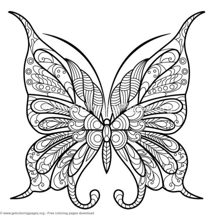 Beautiful Butterfly Coloring Pages Concept