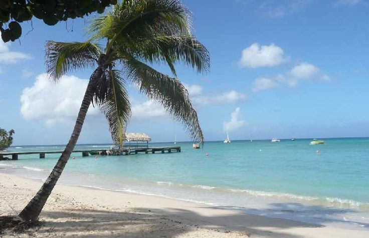 Best Beaches in Trinidad | There is a magic beach in Trinidad and Tobago – Pigeon Point. It is ...