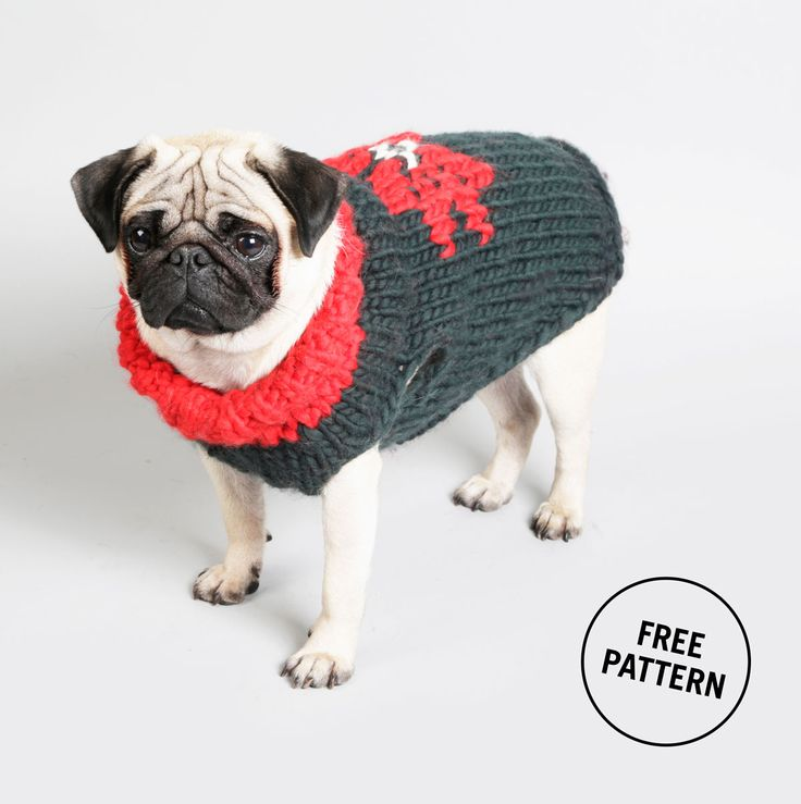 Fantastic Pug Knitting Pattern Photo - Knitting Pattern Ideas ...