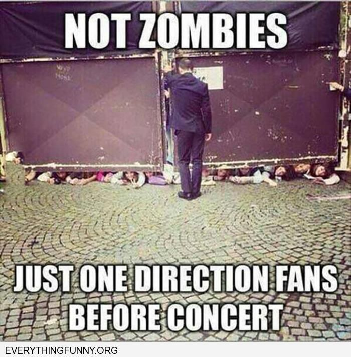 funny caption people trying to get under gate not zombies just one direction fans