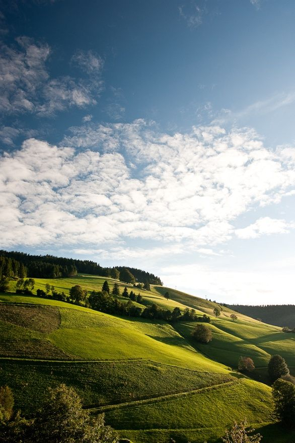 Schwarzwald, Germany I really love these peacefull places