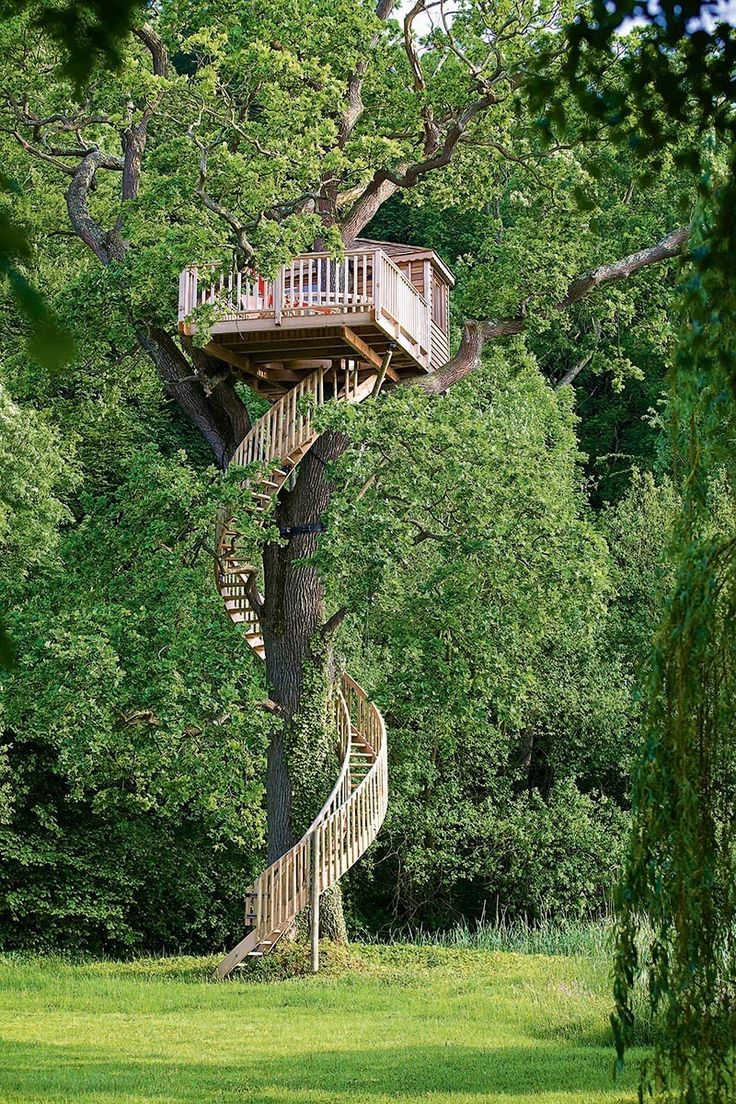 A treehouse in France that is used as a painting studio, with a staircase that winds 23 feet up the trunk of an oak tree.