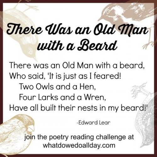 9 best images about limericks on Pinterest | For kids ...