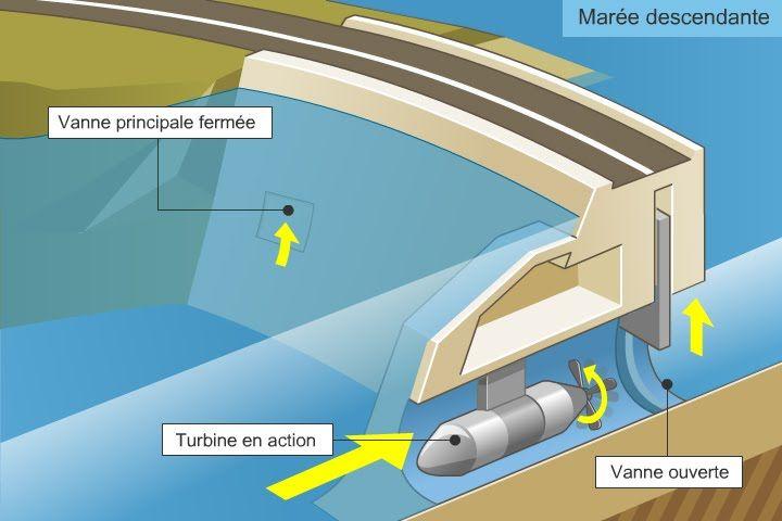Énergie marine | énergie marémotrice :: TPE les énergies marines