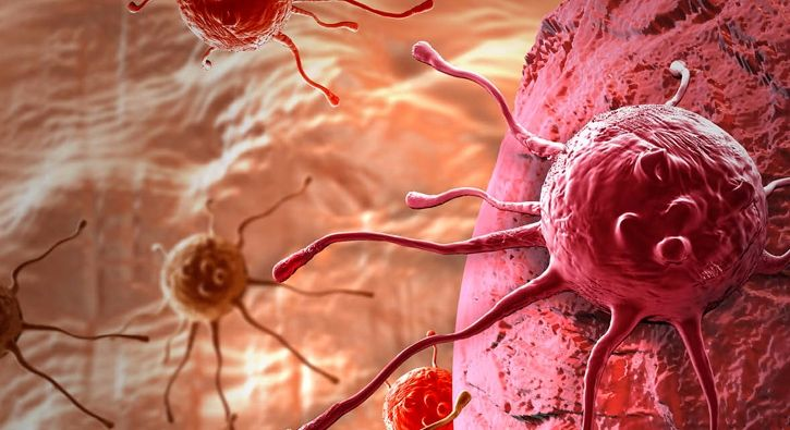 #SAĞLIK Sağlıklı beslenme meme kanseri riskini azaltıyor: Sağlıklı ve iyi beslenme; hemen herkesin yaşam kalitesini yükselten bir unsur…